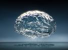 cerebro hecho agua