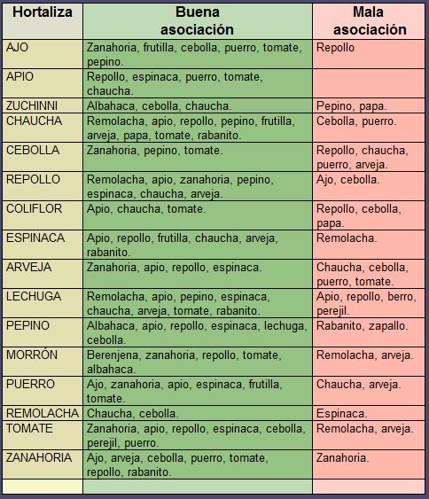 tabla asociacion hortalizas_2
